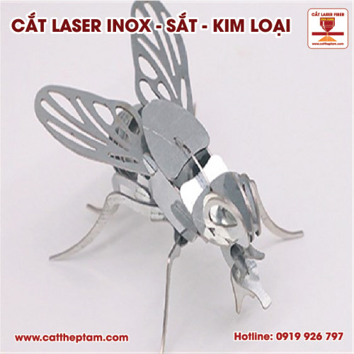 Cắt laser kim loại Tiền Giang